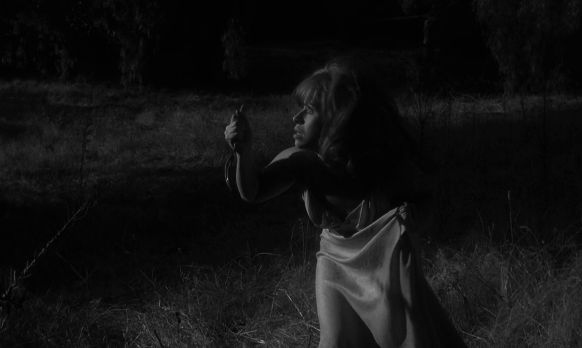 Spider Baby or, The Maddest Story Ever Told (Jack Hill, 1964)